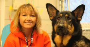 Max and Shiloh- Straw for Dogs Success Story